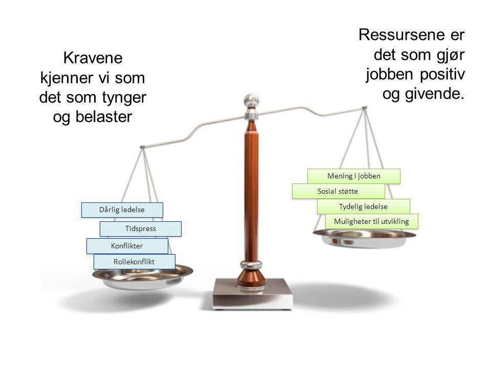 Ressursene er det som gjør jobben positiv og givende.