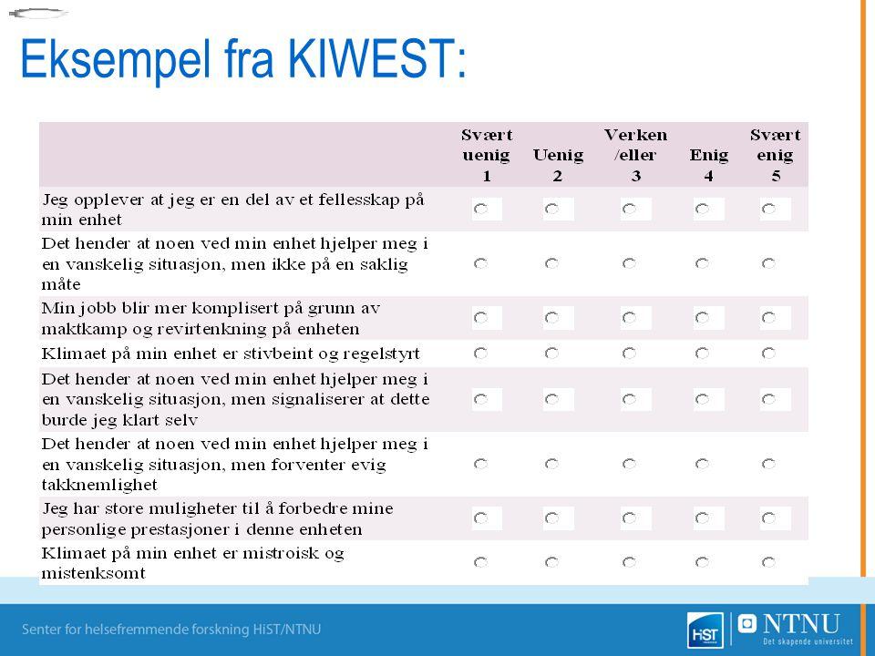 Eksempel fra KIWEST: Web skjema