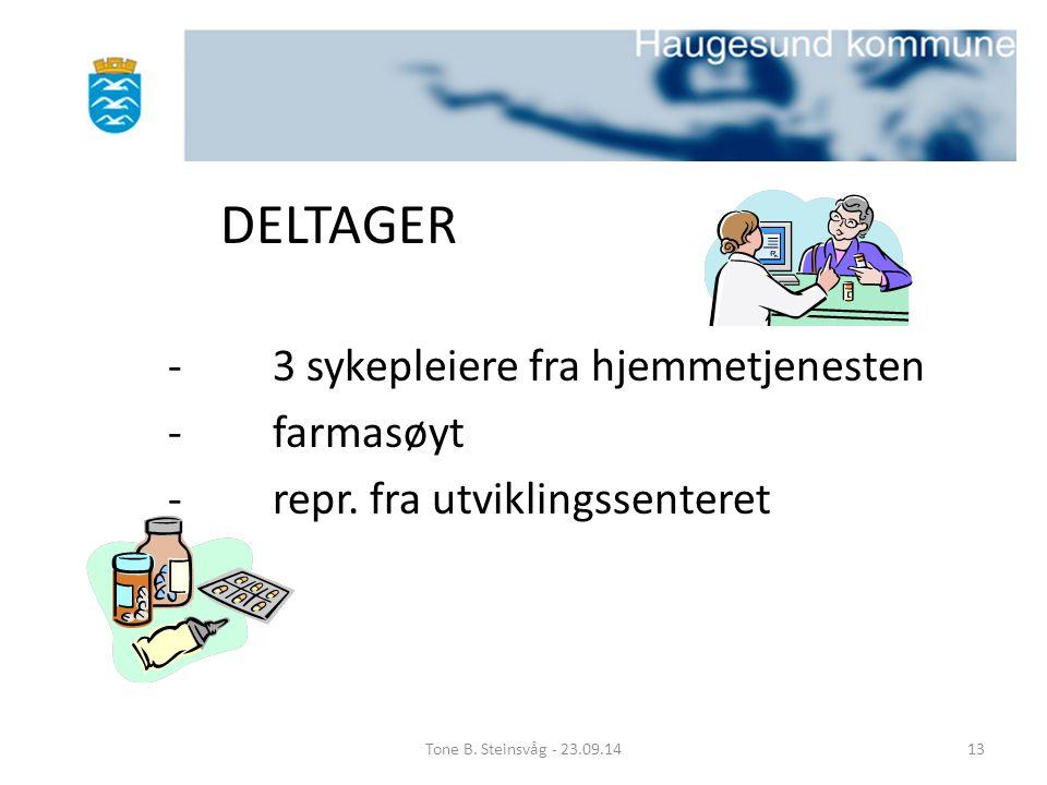 DELTAGER - 3 sykepleiere fra hjemmetjenesten - farmasøyt