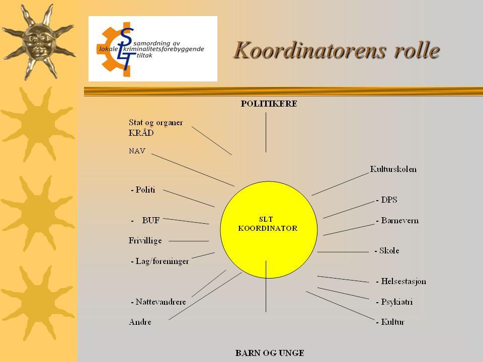 Koordinatorens rolle