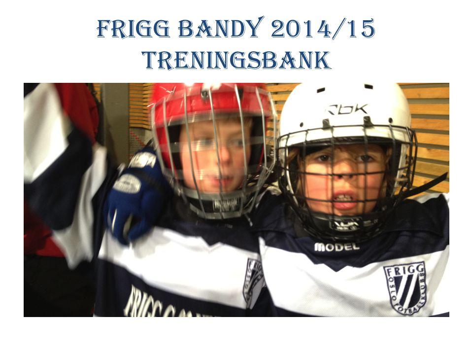 Frigg Bandy 2014/15 treningsbank