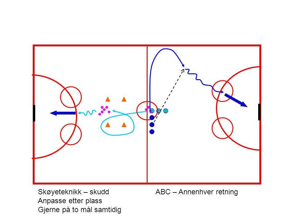 Skøyeteknikk – skudd ABC – Annenhver retning