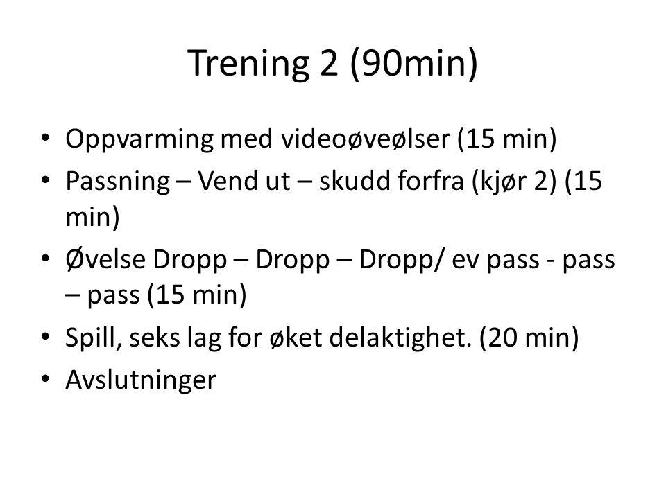 Trening 2 (90min) Oppvarming med videoøveølser (15 min)