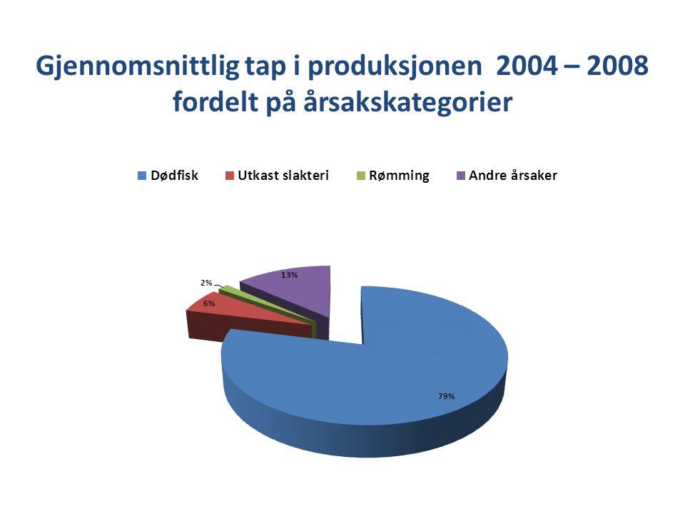 Gjennomsnittlig tap i produksjonen 2004 – 2008 fordelt på årsakskategorier