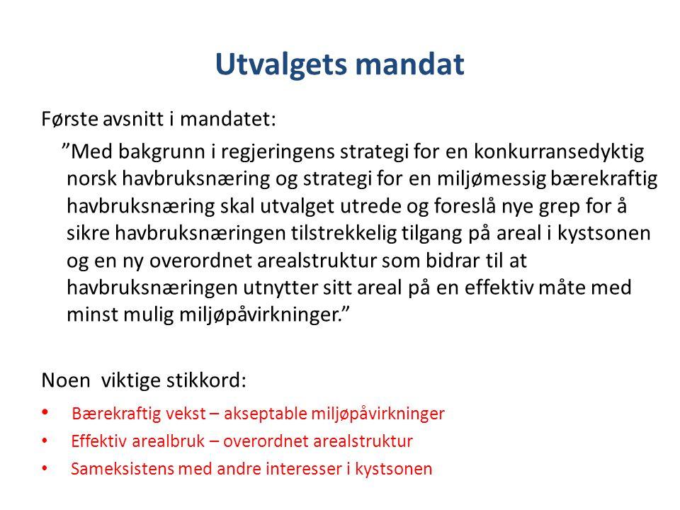 Utvalgets mandat Første avsnitt i mandatet: