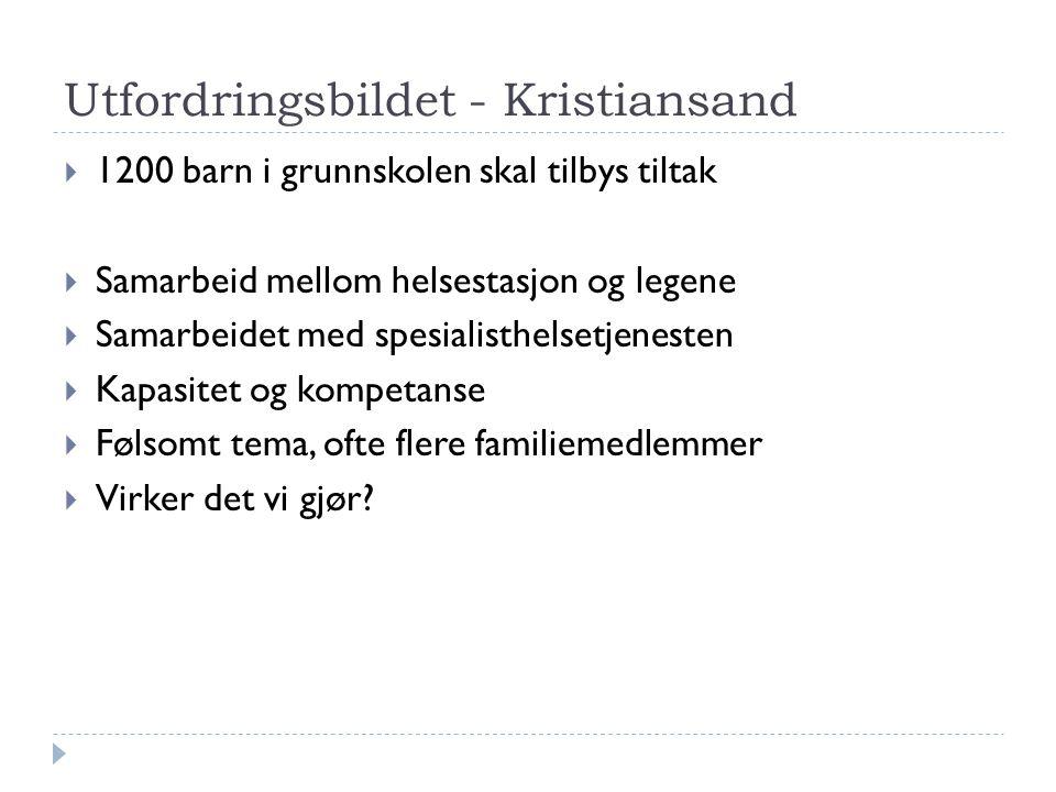 Utfordringsbildet - Kristiansand