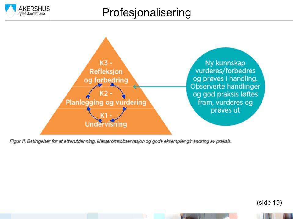 Profesjonalisering (side 19)