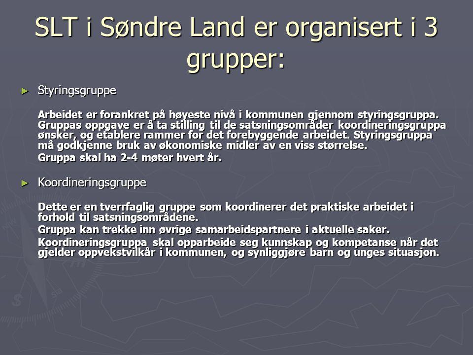 SLT i Søndre Land er organisert i 3 grupper: