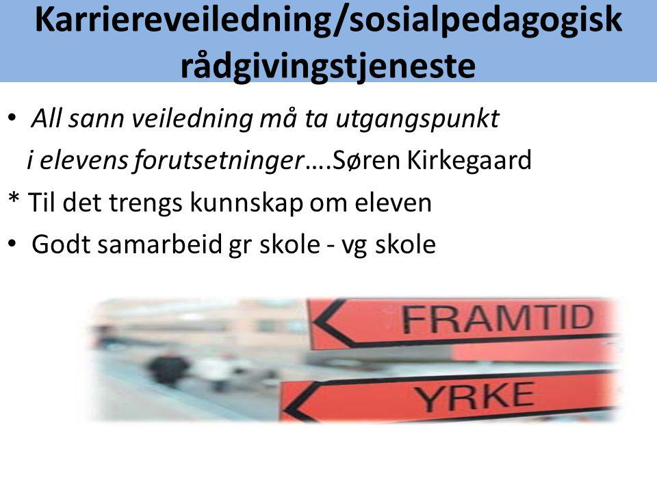 Karriereveiledning/sosialpedagogisk rådgivingstjeneste