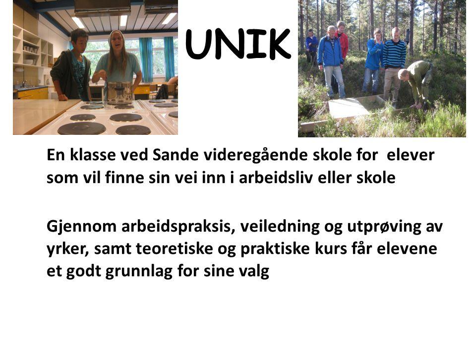 UNIK En klasse ved Sande videregående skole for elever som vil finne sin vei inn i arbeidsliv eller skole.