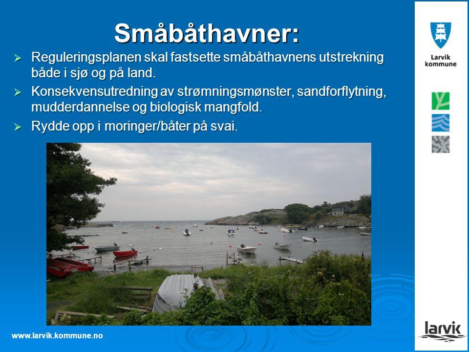 Småbåthavner: Reguleringsplanen skal fastsette småbåthavnens utstrekning både i sjø og på land.
