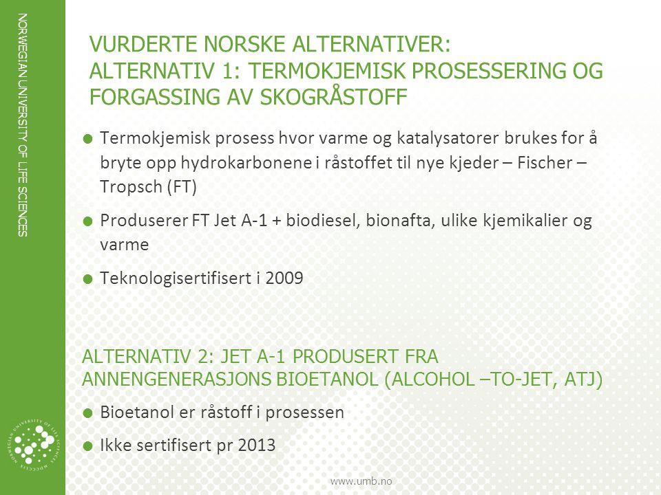 vurderte norske alternativer: ALTERNATIV 1: TERMOKJEMISK PROSESSERING OG FORGASSING AV SKOGRÅSTOFF
