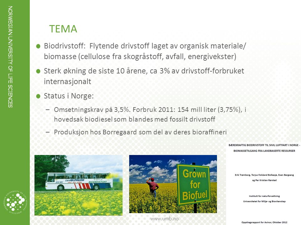 tema Biodrivstoff: Flytende drivstoff laget av organisk materiale/ biomasse (cellulose fra skogråstoff, avfall, energivekster)