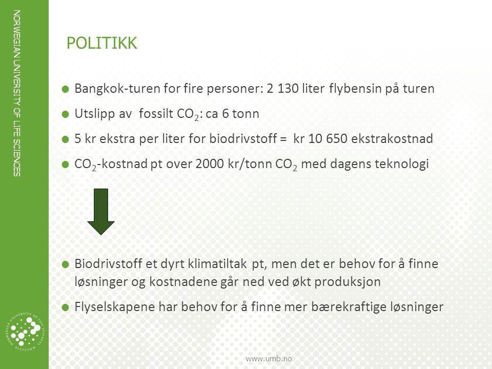 POLITIKK Bangkok-turen for fire personer: 2 130 liter flybensin på turen. Utslipp av fossilt CO2: ca 6 tonn.