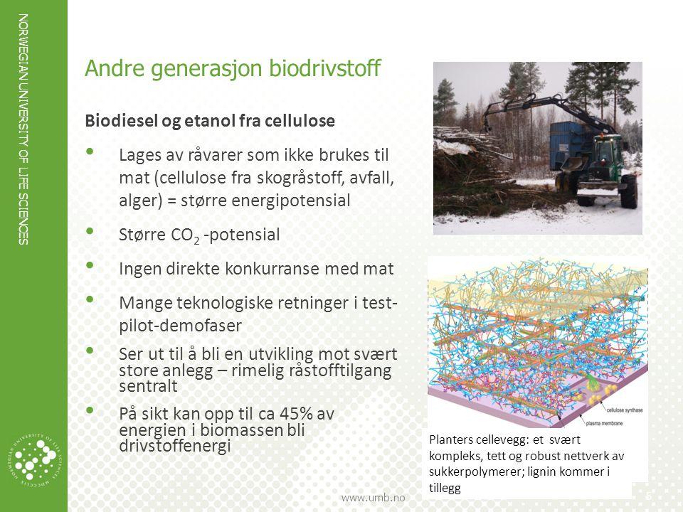 Andre generasjon biodrivstoff