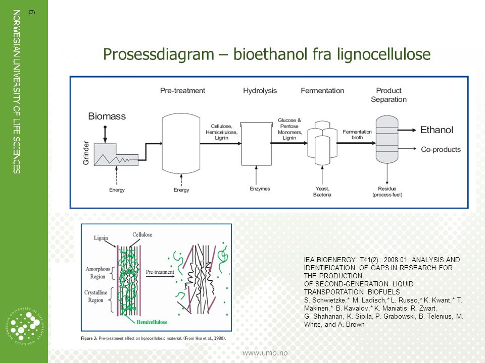 Prosessdiagram – bioethanol fra lignocellulose
