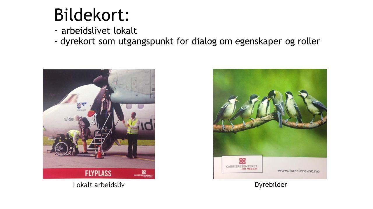 Bildekort: - arbeidslivet lokalt - dyrekort som utgangspunkt for dialog om egenskaper og roller