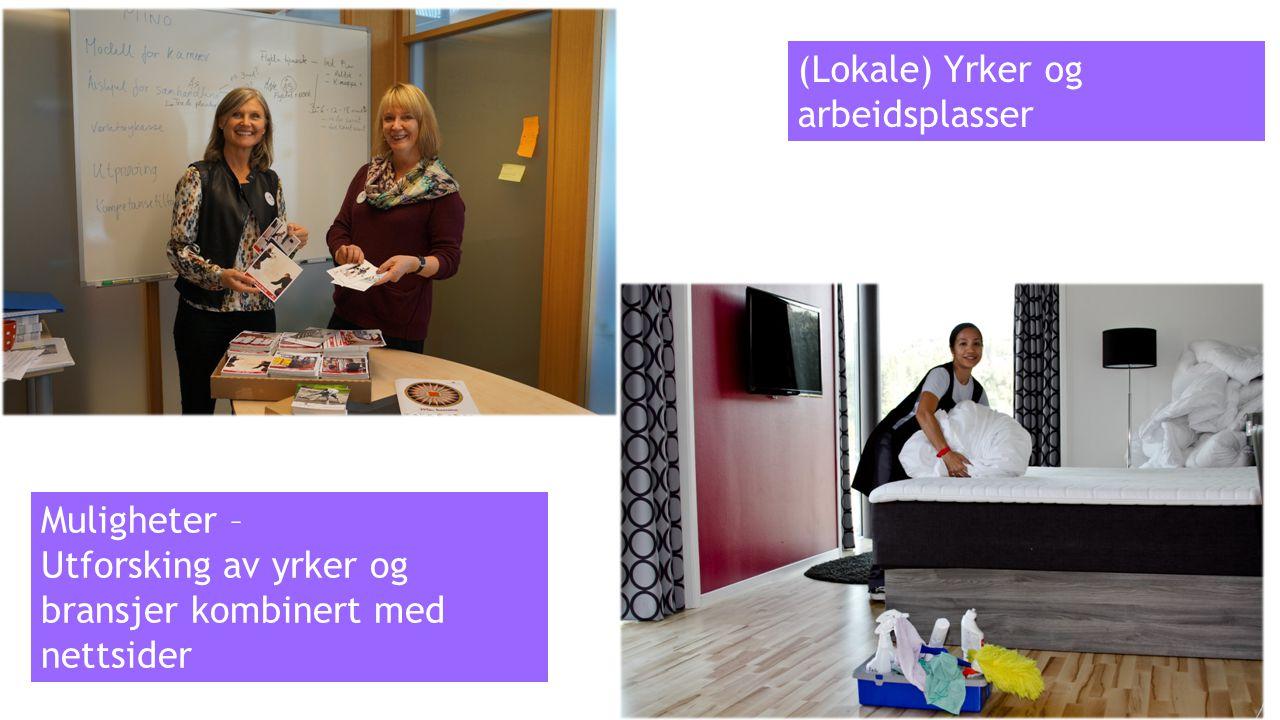 (Lokale) Yrker og arbeidsplasser