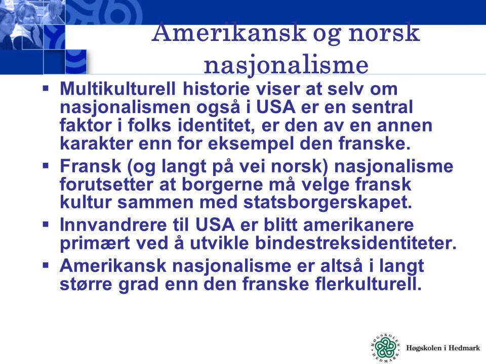 Amerikansk og norsk nasjonalisme