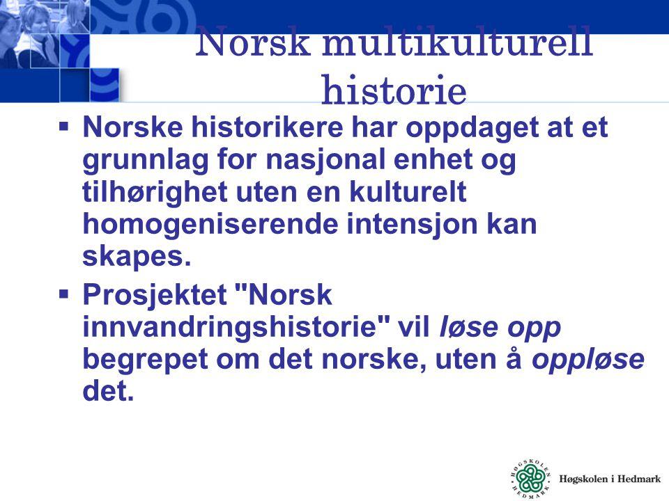 Norsk multikulturell historie