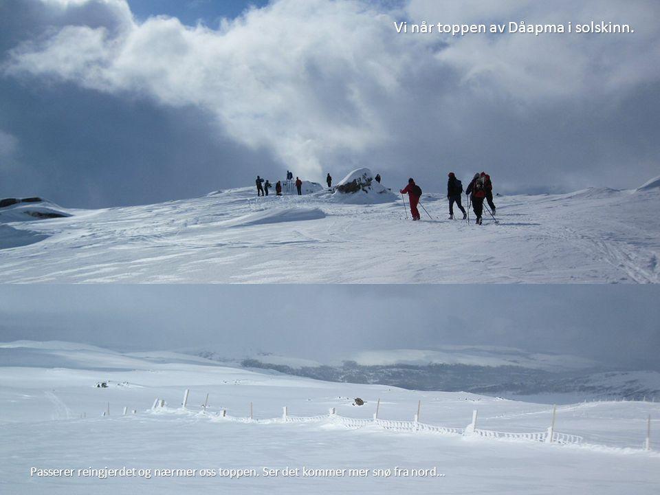 Vi når toppen av Dåapma i solskinn.