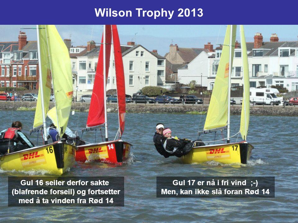 Wilson Trophy 2013 Gul 16 seiler derfor sakte