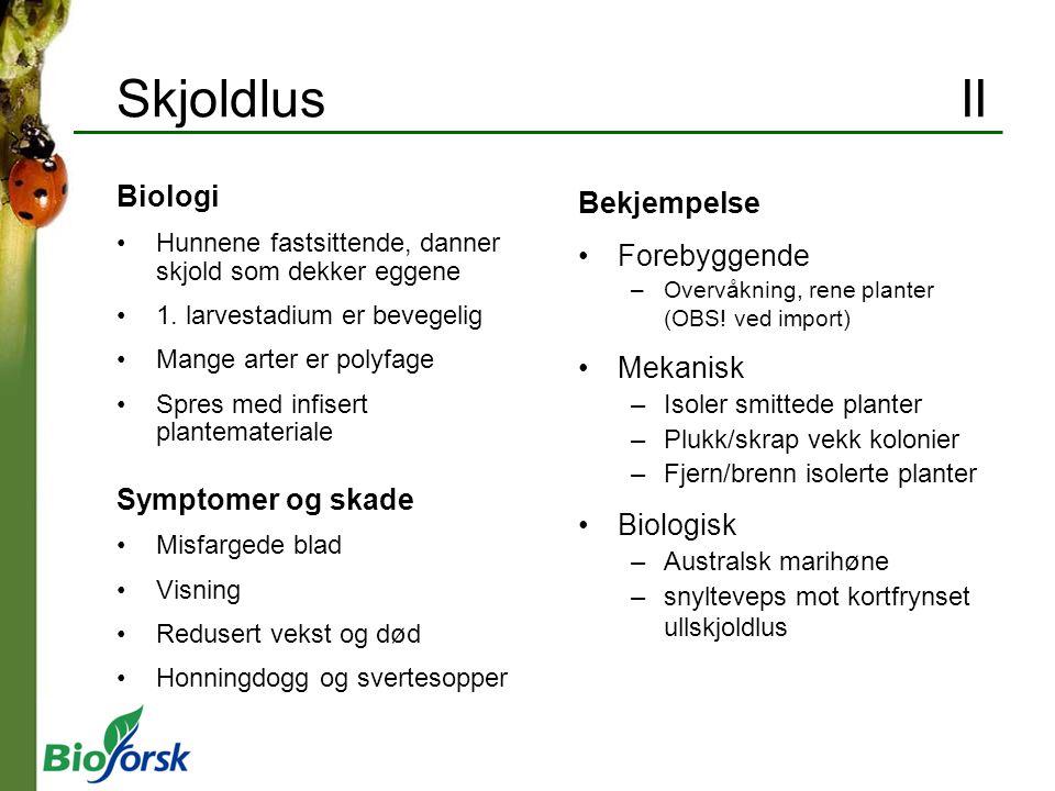 Skjoldlus II Biologi Bekjempelse Forebyggende Mekanisk