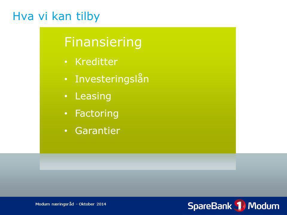 Finansiering Hva vi kan tilby Kreditter Investeringslån Leasing