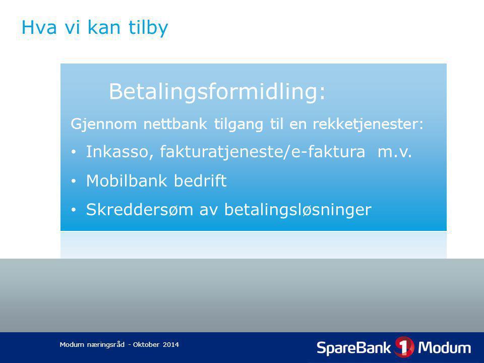Betalingsformidling:
