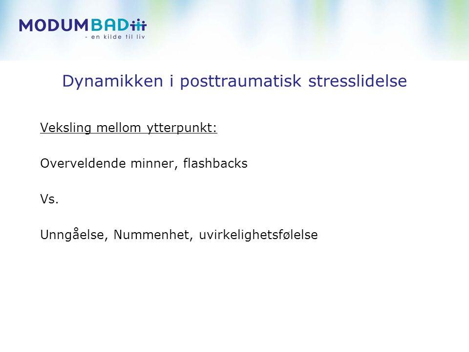 Dynamikken i posttraumatisk stresslidelse