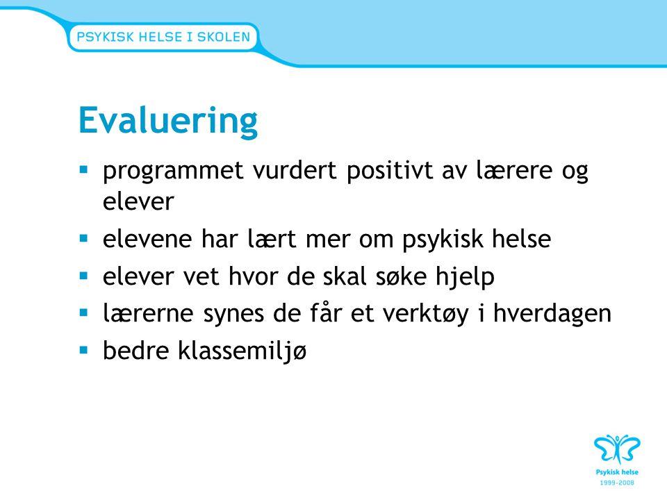 Evaluering programmet vurdert positivt av lærere og elever