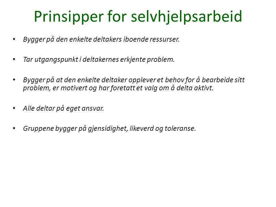 Prinsipper for selvhjelpsarbeid