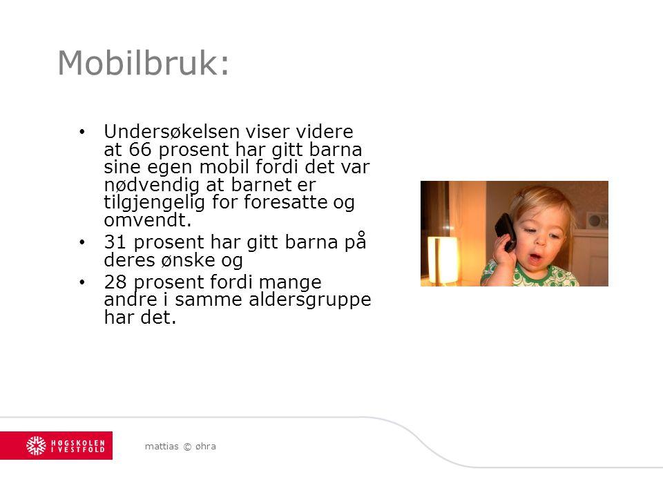Mobilbruk: