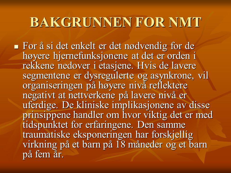 BAKGRUNNEN FOR NMT