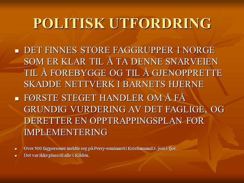 POLITISK UTFORDRING
