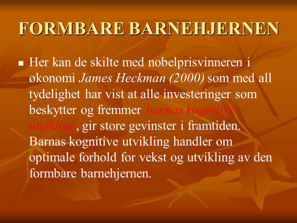 FORMBARE BARNEHJERNEN