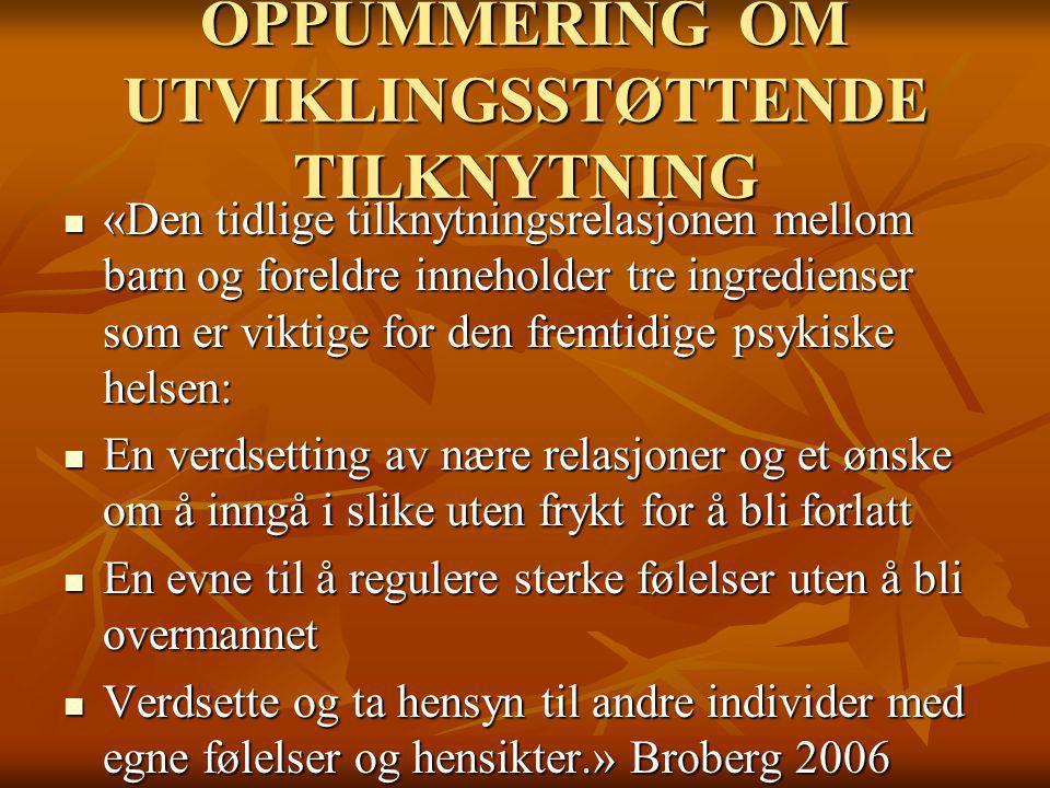 OPPUMMERING OM UTVIKLINGSSTØTTENDE TILKNYTNING