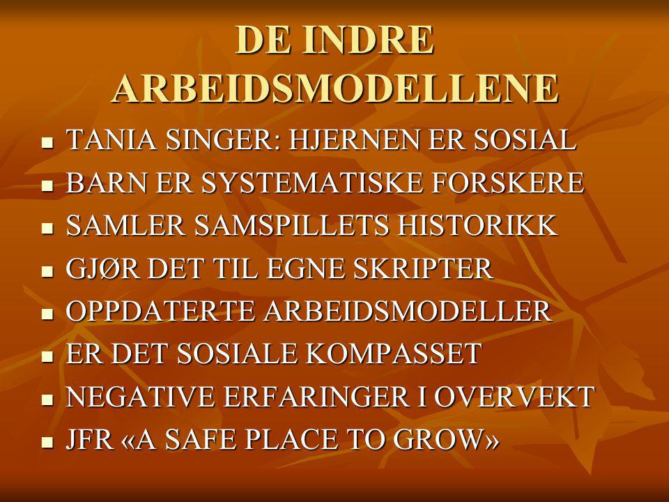 DE INDRE ARBEIDSMODELLENE