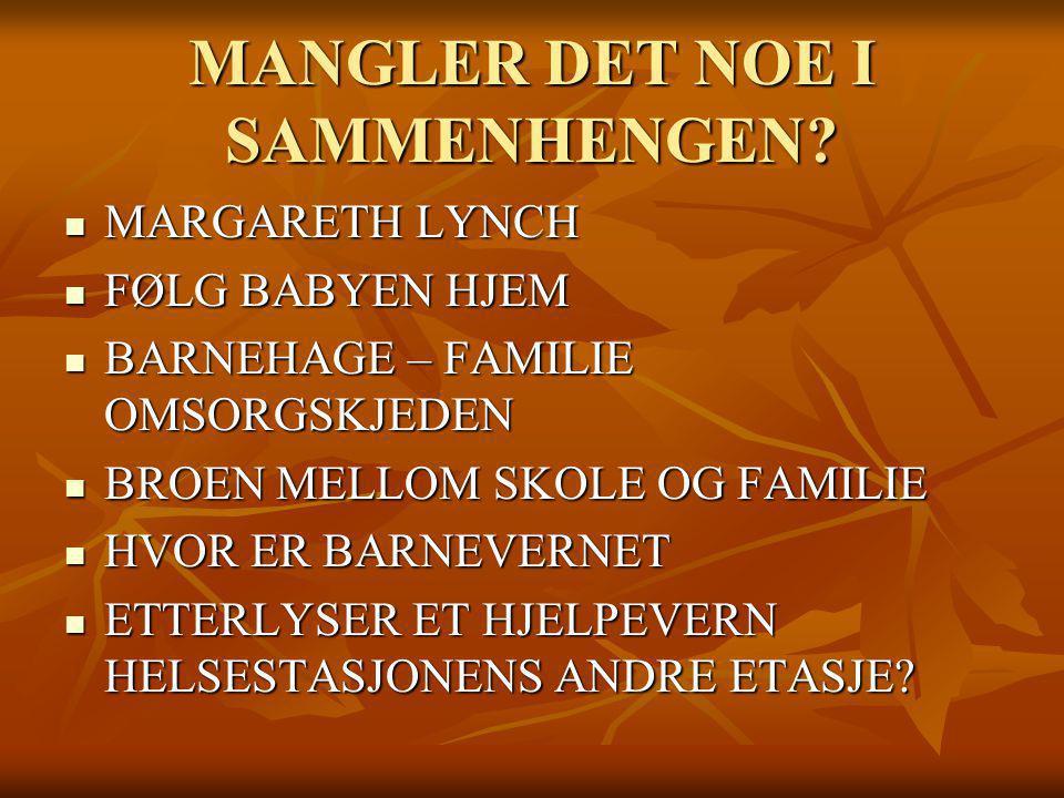 MANGLER DET NOE I SAMMENHENGEN