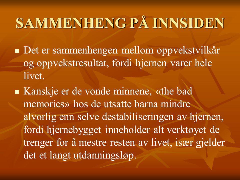 SAMMENHENG PÅ INNSIDEN
