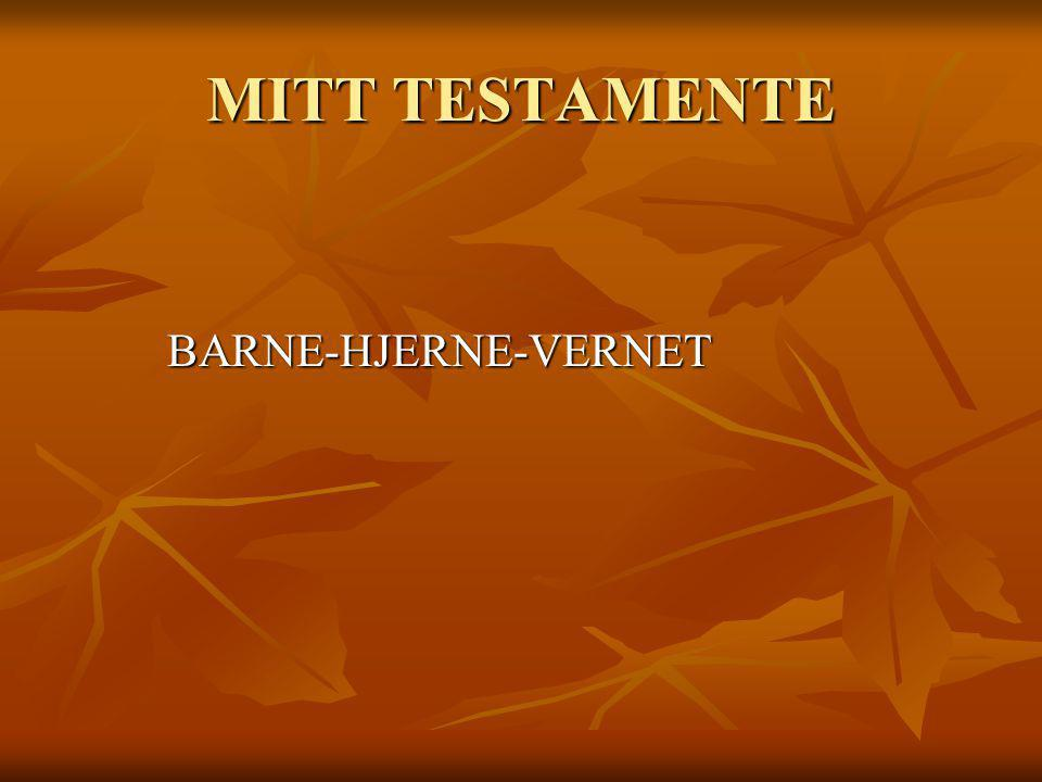 MITT TESTAMENTE BARNE-HJERNE-VERNET