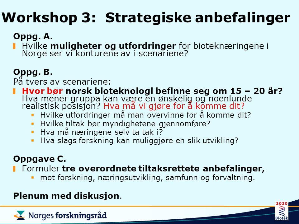 Workshop 3: Strategiske anbefalinger