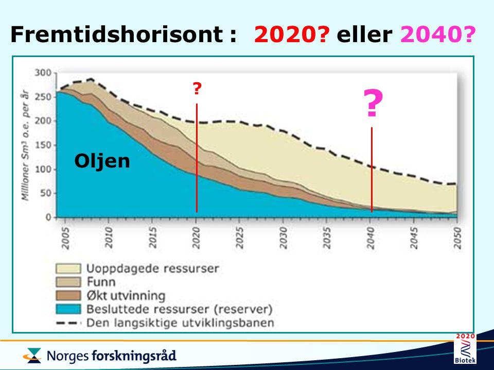 Fremtidshorisont : 2020 eller 2040
