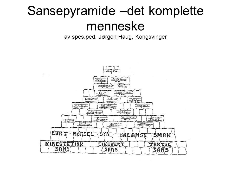 Sansepyramide –det komplette menneske av spes. ped