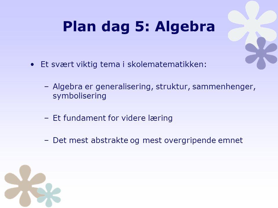Plan dag 5: Algebra Et svært viktig tema i skolematematikken: