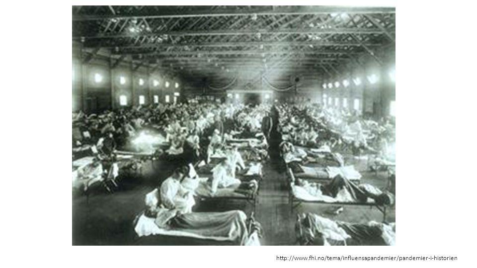 http://www.fhi.no/tema/influensapandemier/pandemier-i-historien