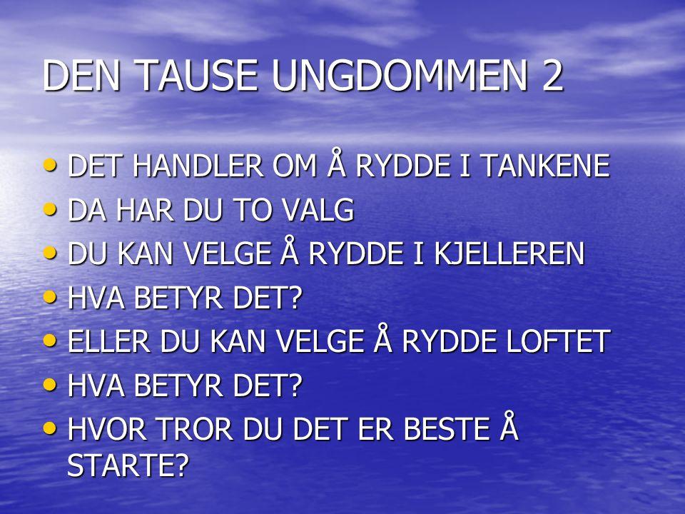 DEN TAUSE UNGDOMMEN 2 DET HANDLER OM Å RYDDE I TANKENE