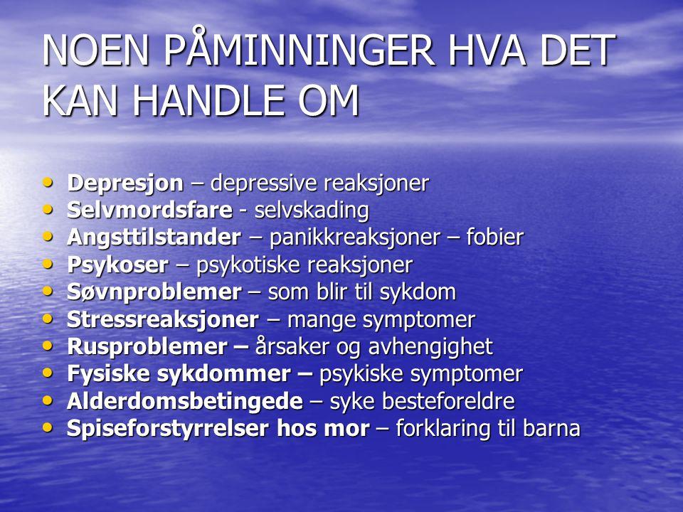 NOEN PÅMINNINGER HVA DET KAN HANDLE OM