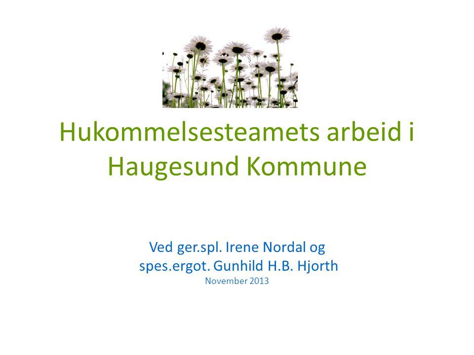 Hukommelsesteamets arbeid i Haugesund Kommune