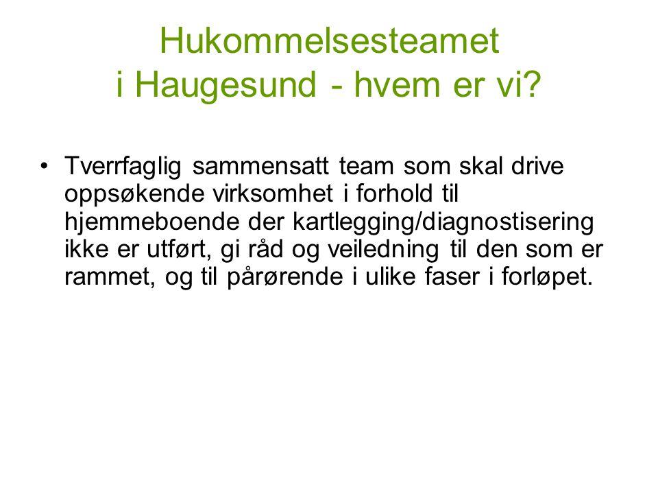 Hukommelsesteamet i Haugesund - hvem er vi